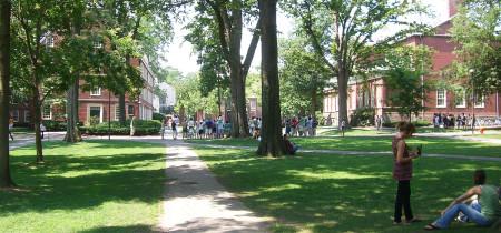 Campus universidad Harvard