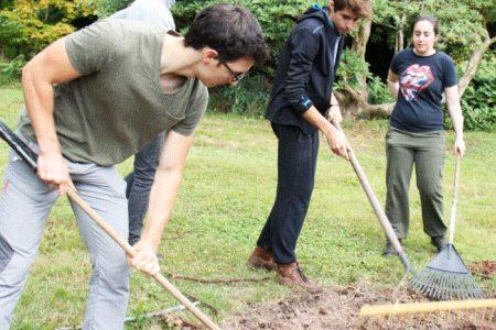 Trabajo para jovenes de voluntariado en Irlanda
